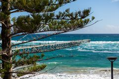 A pine tree in focus with the Port Noarlunga Jetty selectively b. Lurred on a rough day in South Australia on 6th September 2018 royalty free stock image