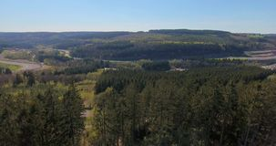 Pine Tree Forest from Above. Pine forest from above, aerial view of beautiful trees on a warm summer day stock footage