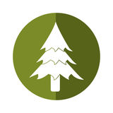 Pine tree forest camping icon button shadow Royalty Free Stock Photos