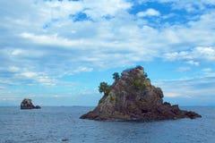 Rock and pine of Minami Izu Ose seashore. A pine tree growing on the rock of the Minami Izu Sea is unusual stock photography