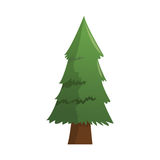Pine tree icon. Over white background. colorful design. vector illustration