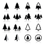 Pine tree icons set vector illustration