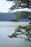 Landscape of Dalat Highlands in Vietnam Royalty Free Stock Image