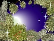 Pine tree night star. Vector doodle with hand drawn at night New year celebratory pine and tree branches with bright moon and stars on a blue gradient background Stock Image