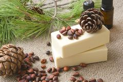 Pine tree oil soap Stock Photography