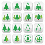 Pine tree, park vector green icons set Royalty Free Stock Photography