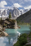 Pine tree on the rock in beautiful Shavlinsky lake. Pine tree on the rock in beautiful Shavlinsky lake, Altay, Russia Stock Photo