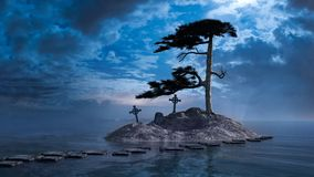 Pine tree on the rock Royalty Free Stock Images