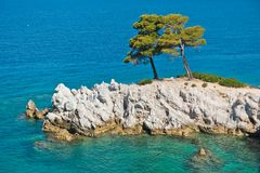 Pine tree on a rock over crystal clear turquoise water, Cape Amarandos at Skopelos island. Greece stock photography