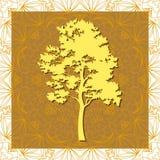 Pine Tree Silhouettes Stock Photos