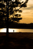 Pine tree silhouette. Silhouette of pine tree with people underneath by the frozen lake at dusk Stock Photo