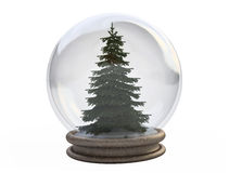 Pine Tree In a Snow Globe Royalty Free Stock Photo