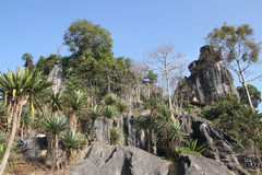 Pine tree stand towering on the cliff in lushan. Pine tree stand tower on the cliff in lushan Stock Photography