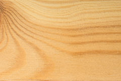 Pine tree texture. Light  wood, natural pattern Royalty Free Stock Image