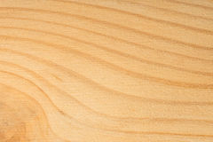 Pine tree texture. Wood background, light natural pattern Royalty Free Stock Image