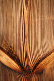 Pine tree timber wall Royalty Free Stock Images