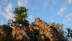 Pine-tree on top of the rock, beautiful cloudy sky at background.  stock video footage