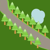 Pine trees along the road background. Vector Illustration Royalty Free Stock Image
