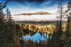 Pine Trees Beside Body of Water Near Mountain Under White Clouds Royalty Free Stock Photography