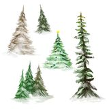 Pine trees and Christmas trees. Collection of pine trees and Christmas trees illustration isolated on white background stock illustration