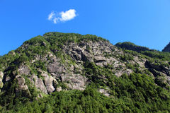 Pine trees covering a granite mountain. Steep slope Royalty Free Stock Photos