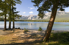 Mountain Lake Scenic Stock Image