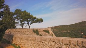 Pine trees on the fortress. Pine trees on the medieval fortress Stock Photos