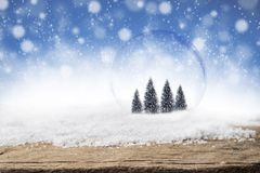 Pine trees in glass bubble on Christmas snow background. Pine trees in glass bubble ball on Christmas snow and wood background. Frost snow and wooden desk space Royalty Free Stock Photo