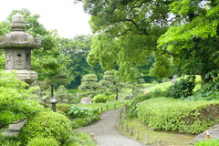 Pine trees, green plants, footpath in Japanese zen garden Royalty Free Stock Images
