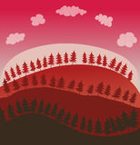 Pine Trees and Hills Environment. Royalty Free Stock Photo