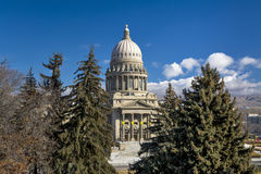Pine trees and the Idaho State Capital building Royalty Free Stock Images
