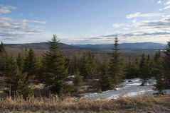 Pine Trees and Mountains In New England Stock Photos