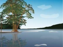 Pine trees near frozen lake illustration Stock Images