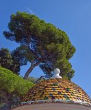 Pine Tree & Building on Hill Above Nice, Provence France Stock Image