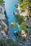 Pine trees on a rock over crystal clear turquoise water near Cape Amarandos at Skopelos island. Greece royalty free stock photo