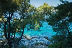 Pine trees on a rock over crystal clear turquoise water near Cape Amarandos at Skopelos island. Greece royalty free stock photography