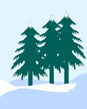Pine Trees. Set of Christmas Pine Trees Royalty Free Stock Photography