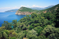 Pine trees on the southern coast of Turkey. Calm blue sea and clear sky. View of Mediterranean Sea from Cape Gelidonya.  Spring sunny day in Antalya province Royalty Free Stock Photo