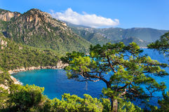 Pine trees on the southern coast of Turkey. Calm blue sea and clear sky. View of Mediterranean Sea from Cape Gelidonya. Spring sunny day in Antalya province Royalty Free Stock Images
