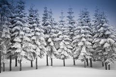 Pine Trees under snowflakes Royalty Free Stock Photo