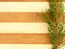 Pine treesl on a chopping board Royalty Free Stock Photography