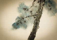 Pine Trunk And Branches Stock Photography