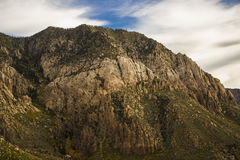 Pine Valley Mountains 1 Stock Photography