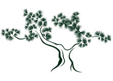 Pine vector Royalty Free Stock Photography
