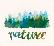 Pine waterccolor forest. Royalty Free Stock Photos