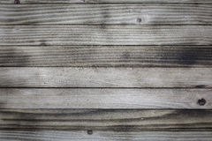 Pine  Wood background Stock Photography