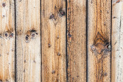 Pine wood board background texture Stock Images
