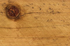 Pine wood knot Stock Images