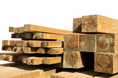 Pine wood logs Royalty Free Stock Photography