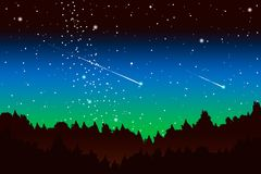 Pine wood at night with a shooting star vector illustration